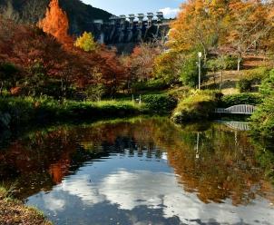 秋のダム広場