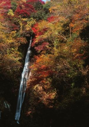 洒水の滝紅葉