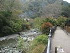 丹沢湖・中川温泉 紅葉情報(11/11)