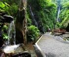 本日7/27 洒水の滝がTV放送されます。