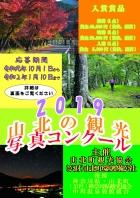 桜の開花情報!!3月28日更新