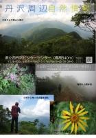 丹沢湖自然情報(8月11日時点)