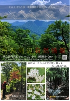 丹沢湖周辺情報(6月6日時点)