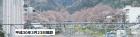 桜開花状況(3/27更新)