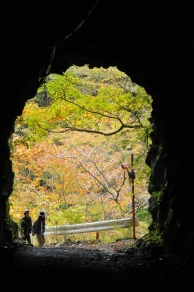 トンネルの向う側