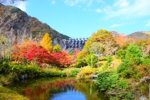 秋の癒し美保ダム