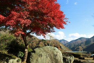 紅葉の丹沢湖