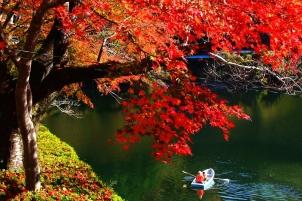 丹沢湖の休日