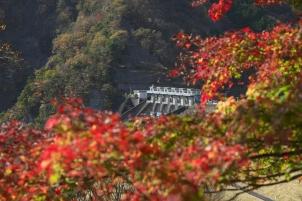 秋の三保ダム