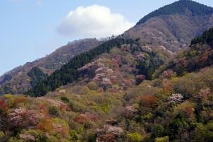 山々に春の訪れ