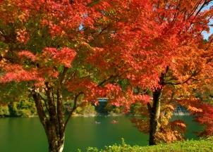 盛秋の丹沢湖畔