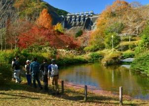 秋の三保ダム園地