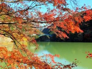 紅葉が飾る中川橋