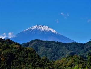 大野山登山道から