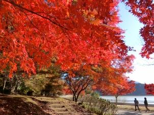 紅葉の湖畔